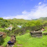 деревенская жизнь :: Олеся Ханина