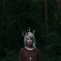 Лесные сказки :: Irina Voinkova