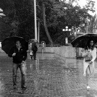 Дождь :: Стас