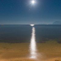 Лунная дорожка. :: Виктор Евстратов