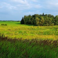 Широка страна моя родная ... :: Андрей Куприянов