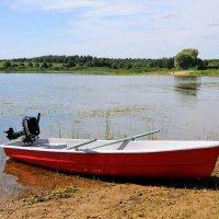 В ожидание рыбака :: Андрей Куприянов