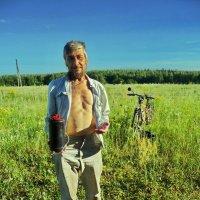 На земляничной поляне! :: Владимир Шошин