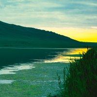 Утро на озере :: Роман