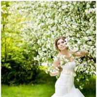 Яблони в цвету... :: Анна Плаксенко