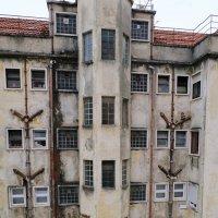 Старый дом. :: Ольга Васильева
