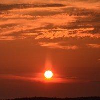луч солнца золотого :: Валентина Папилова