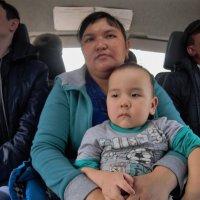 Можно теперь ехать- мама и малыш под надежной охраной :: Николай Сапегин