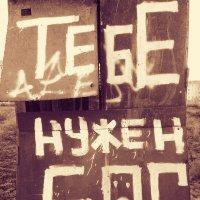 в поисках ответа :: владимир полежаев