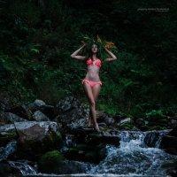 Портрет в горах :: Василиска Переходова