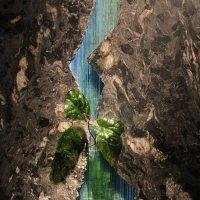 Вселенная воды :: Татьяна Гузева