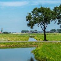 Пейзажи Голландии, каналы на первом месте! :: Witalij Loewin