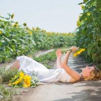Девушка в подсолнухах. Прогулочная фотосессия.Руслан Кокорев. :: Руслан Кокорев
