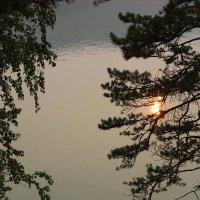 Отраженье :: Тыртышных Светлана