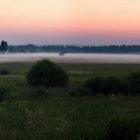 Вечерний туман :: Константин