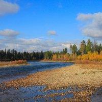 Осень на Белой :: Владимир Собардахов