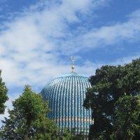 Купол Соборной мечети :: Агриппина