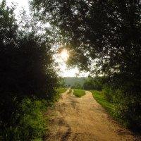 Навстречу солнцу :: Андрей Лукьянов