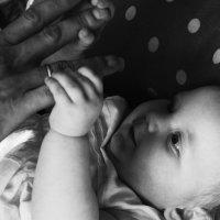 Маленькая жизнь :: Елизавета Бородина