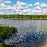На излёте знойного июля... :: Лесо-Вед (Баранов)