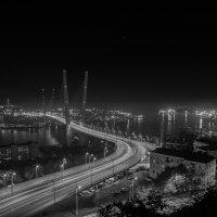 """Мост """"Золотой рог"""" :: Юлия Другова"""