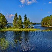 На озере Жемчужное :: Валентина Папилова