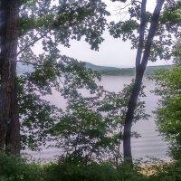 Вид на озеро !!! :: Татьяна ❧