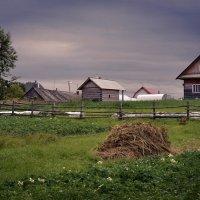 в деревне... :: Елена Третьякова