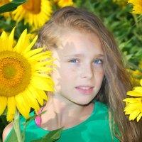 солнечные веснушки :: Юлия Коноваленко (Останина)