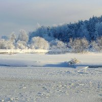 Зимняя сказка :: Павлова Татьяна Павлова
