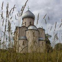 Церковь Спаса на Нередице. :: Ольга Лиманская