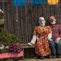 В одной из деревень Кировской области... :: Денис Малых
