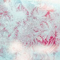 зимний рисунок на стекле :: zarina gd