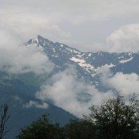 Горы в тумане 2 :: Елена Шишлянникова
