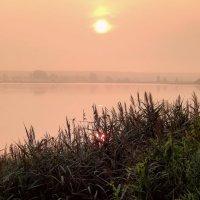 Утро туманное 2 :: Nikolay Ya.......