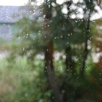 А за окном дождь... :: Cветёлка ***