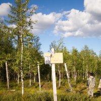 501 стройка - вход в лагерь :: евгений Смоленцев