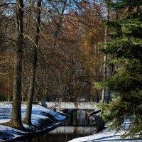 Мартовский снег :: Владимир