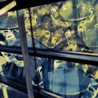 Мир реальности и отражений :: MVMarina