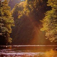 Природа рисует для нас пейзажи. Горная река. У водопада. :: Наталья Мирошниченко
