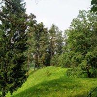 Екатерининский парк в Павловске :: Larisa Ereshchenko