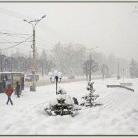 winter :: Юрий Ефимов
