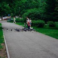 Дети кормят голубей :: Света Кондрашова