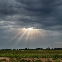 Луч света в темном царстве :: Александр Афромеев