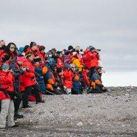 Отбиться от фотографов не просто даже в Арктике:) :: Tatiana Belyatskaya