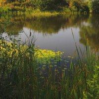 Утро на горном озере. :: Vladimir 070549
