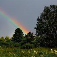 После дождя :: Иван Миронов