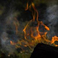 Огонь :: Elena Ignatova
