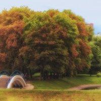 про осень в июле :: mig-2111 Новик