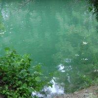 Жидкий изумруд как явление природы :: Марина Домосилецкая